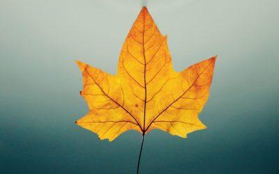 6 Tipps gegen Herbstblues und nervige Lockdowns